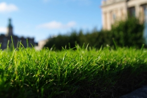 údržba záhrady - zelen-slovakia.sk